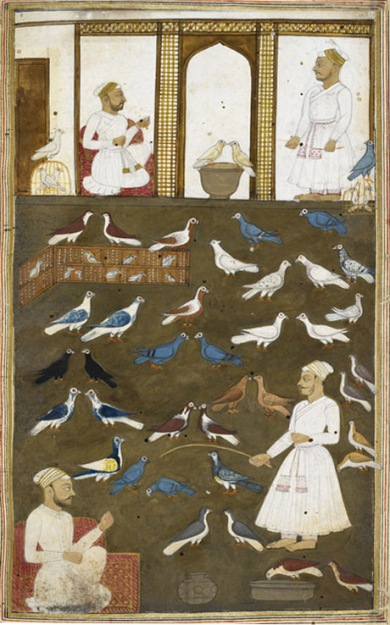 The Book of Pigeons, by Valih Musavi (1788).