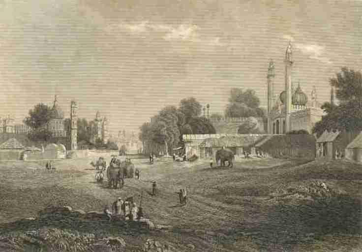 purser1840